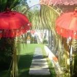 SIPO Decoration for Party