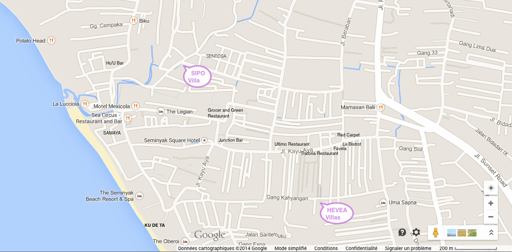 probleme google maps